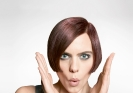 Goldwell Reallusion Trend 2014